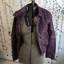 Steve Madden Purple Plum Faux Leather Jacket Size M Nwt Photo