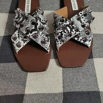 Steve Madden Shoes Size 7.5 Photo