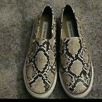 Steve Madden Snake Python Print Slip on Sneakers Size 9 Photo