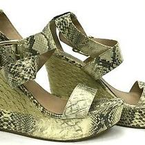 Steve Madden Snakeskin Size 9.5 Open Toe Platform Espadrille Shoes Ladies Heel Photo