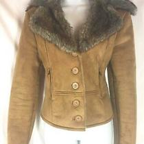 Steve Madden Tan Faux Sude Faux Fur Collar Winter Coat Jacket S Photo