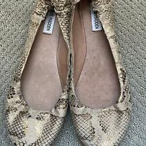 Steve Madden Women Gold/tan Snake Print Ballet Flat Size 10 Photo