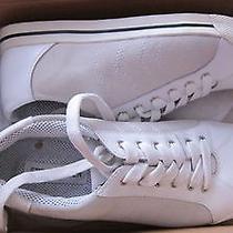 Steve Madden Women's Sneakers Size 9 Photo