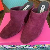 Steve Madden Women's Stella Mule Plum Size 7.5 Photo