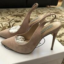 Steve Madden Womens Dulce Pointed Toe Sling Back Classic Blush Nude Size 8 Photo