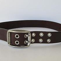 Steve Madden Womens Genuine Wide Brown Leather Silver Buckle Grommet Belt M Photo