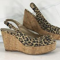 Stuart Weitzman Animal Print Cork Wedge Heels Slingback Open Toe Shoes Sz 8.5m Photo