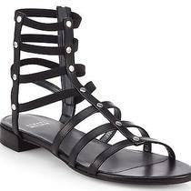 Stuart Weitzman Caesar Gladiator Shot Sandals Size 8 Nib Black Stretch Strappy Photo
