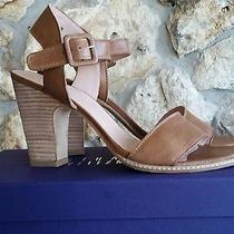 Stuart Weitzman Dark Beige Tan Leather Sandals Sz 9.5 M  Photo