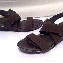 Stuart Weitzman Sz 11 N Dark Brown Low Wedge Heel Strappy Sandals Photo