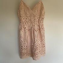Stunning Blush Pink Lace Dress Size S Photo