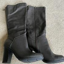 Style and Co Stella Gray Below Knee Boots Size 10m Excellent Condition Photo