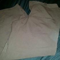 Style & Co Brown Dress Pants Women's Size 14 Nice Photo