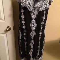 Style & Co Dress Medium Photo