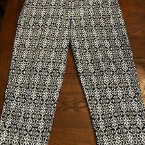Style & Co Stretch Black/white Ankle Pant sz.14 Photo