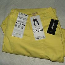 Style & Co Tummy Control Woman's 16w Capri Nwt Macy's Photo