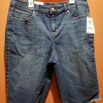 Style & Co. Womens Blue Frayed Bermuda Mid Rise  Denim Shorts Size 10 Photo