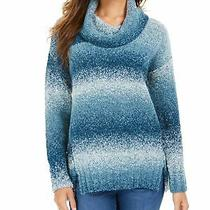 Style & Company Womens Blue Long Sleeve Sweater Petites Pxl Photo