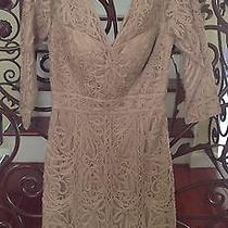 Sue Wong Beige Embroidered Bridal Short Lace Formal Cocktail Evening Dress (S2)  Photo