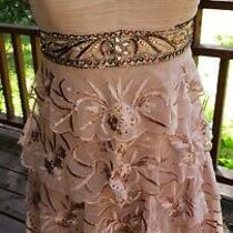 Sue Wong Blush Pink Embellished Nocturne Dress Size 4 Pleated & Beaded Photo