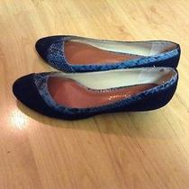 Suede and Snake Trimmed Shoes Photo