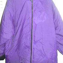 Sunny's Basix Official Outdoor Wear Since 1948 Dark Purple Coat Photo