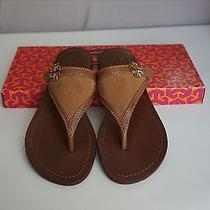 Super Cute Nib Tory Burch Beige Thong Sandals Shoes Sz 5.5 Photo