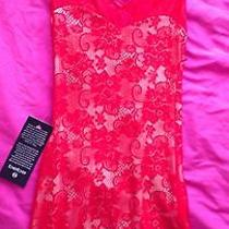Super Sexy Holiday Dress Brand New by Bebe Lace Material Photo