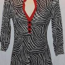 Sweet Pea Anthropologie Women's Shirt Zebra Print Sheer Sz Medium Free Shipping Photo