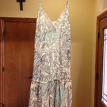 Sweet Pea by Stacy Frati Womens Baby Doll Nightie. Nwt Small Floral Photo