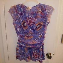 Sweet Pea Top Large v Neck Violet Photo