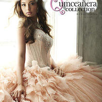 Sweet Sixteen Dress Amazing  Blush Wine Color Photo