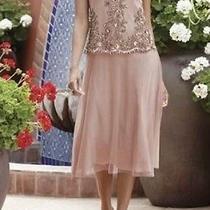 Sz 3x Golden Blush Dress Wedding/cruise/formal Wear Midnight Velvet New Photo