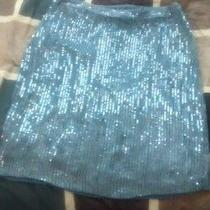 Sz 6 Sequin Skirt Photo