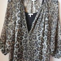 Sz Sm Joie Animal Print Sheer Blouse With Black Cami Top Shirt Awesome Photo