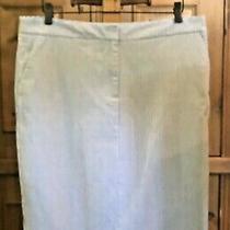 Talbots Blue Chambray White Stripe Trouser Skirt Lined 10 Euc Photo