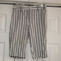 Talbots Blue Stripe Ladies Shorts Sz 4 100% Cotton Photo