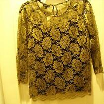 Talbots Gold & Black Lace Top Over Black Camisole Size 4 Nwt Photo