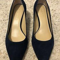 Talbots Navy Blue Suede 2 Inch Kitten Heel Pump Size 8.5 Nib Photo