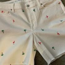Talbots Women's White Denim Cut-Off Shorts Flamingos Palm Tree Size 12 Photo