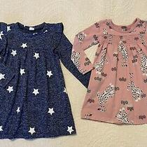 Tea Collection Baby Gap Lot of 2 Girls Long Sleeve Star Cheetah Dresses Sz 2 Photo