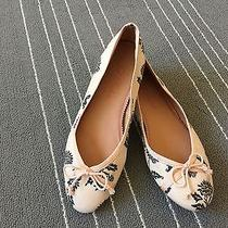 Ted Baker London Blush Pink Floral Print Ballet Flats Shoes 6.5/ 36.5 Photo