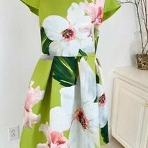 Ted Baker Lynetta Chatsworth Bloom Bright Green Floral Skater Dress Size 2 Uk 10 Photo