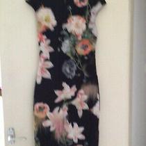 Ted Baker Opulent Bloom. Stunning New Dress Size 2 Photo