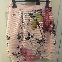 Ted Baker Osuza Skirt Size 2 (10)citrus Bloom Print Mesh Skirt Bnwts Photo