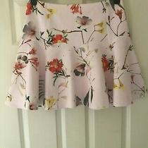 Ted Baker Sz 12 (3) Beautiful Pale Pink Floral Ginene Bloom Botanical Skirt Photo