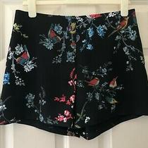 Ted Baker Sz 6 (0) Beautiful  Black Birds Print Floral Bloom  Shorts Immaculate Photo