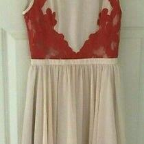 Ted Baker Sz 6 (0) Vember Blush Pink Orange Lace Skater Dress Fit and Flare  Photo