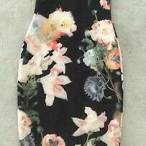 Ted Baker Sz 8 ( 1) Beautiful Opulent Bloom Carpa Black Floral Dress Immaculate  Photo