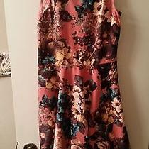 Teen Dress Nwt Teen Vogue/mstylelab Size M Color Blush Combo Suggest 42.00 Photo